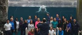 Dolphin Quest on US mission